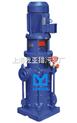 200DL300-20×2DLR型立式多级泵