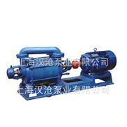 2SK型水環真空泵
