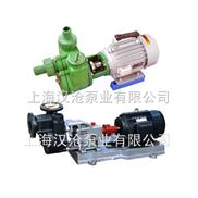 FPZ塑料自吸化工泵