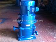 DL立式多级泵,优质立式管道多级泵,多级泵,多级泵安装说明,多级泵安装尺寸