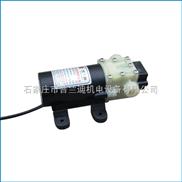 微型隔膜水泵 普兰迪牌24V35W微型隔膜水泵